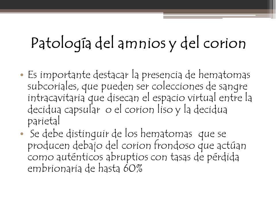 Patología del amnios y del corion