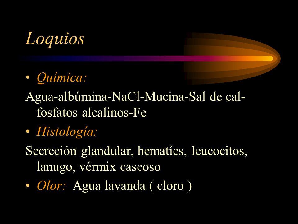 Loquios Química: Agua-albúmina-NaCl-Mucina-Sal de cal- fosfatos alcalinos-Fe. Histología: