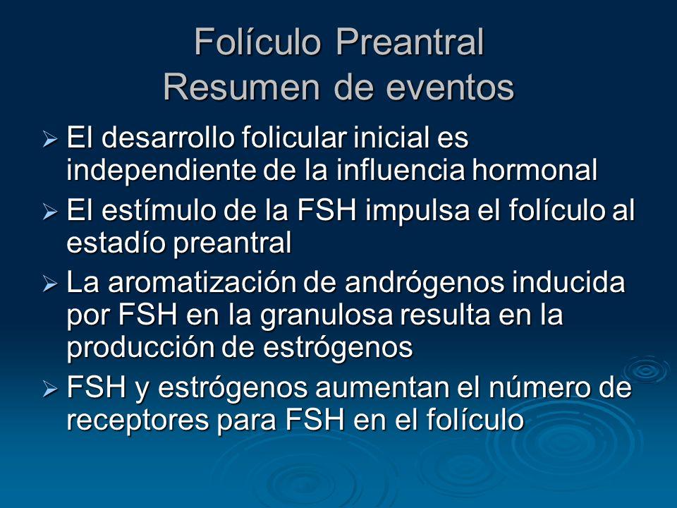 Folículo Preantral Resumen de eventos