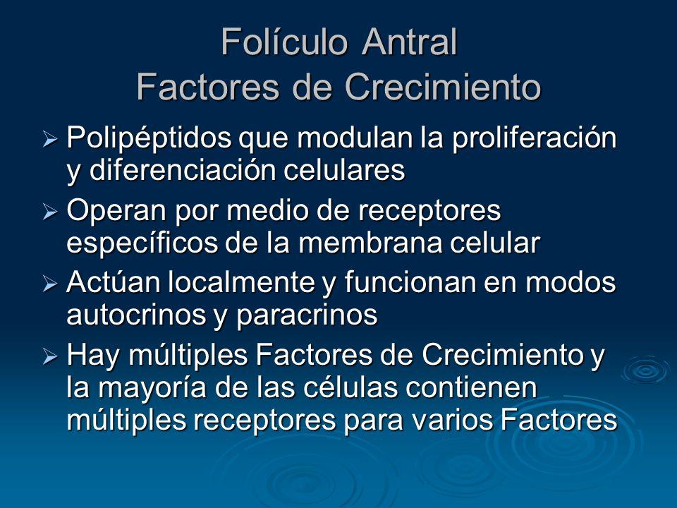 Folículo Antral Factores de Crecimiento