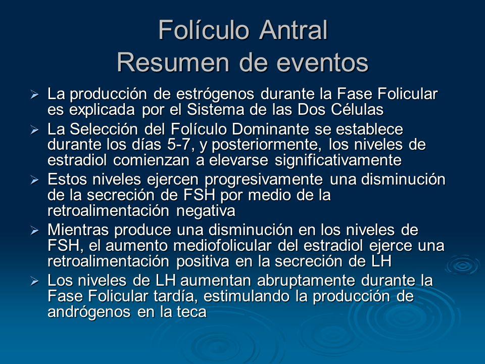 Folículo Antral Resumen de eventos