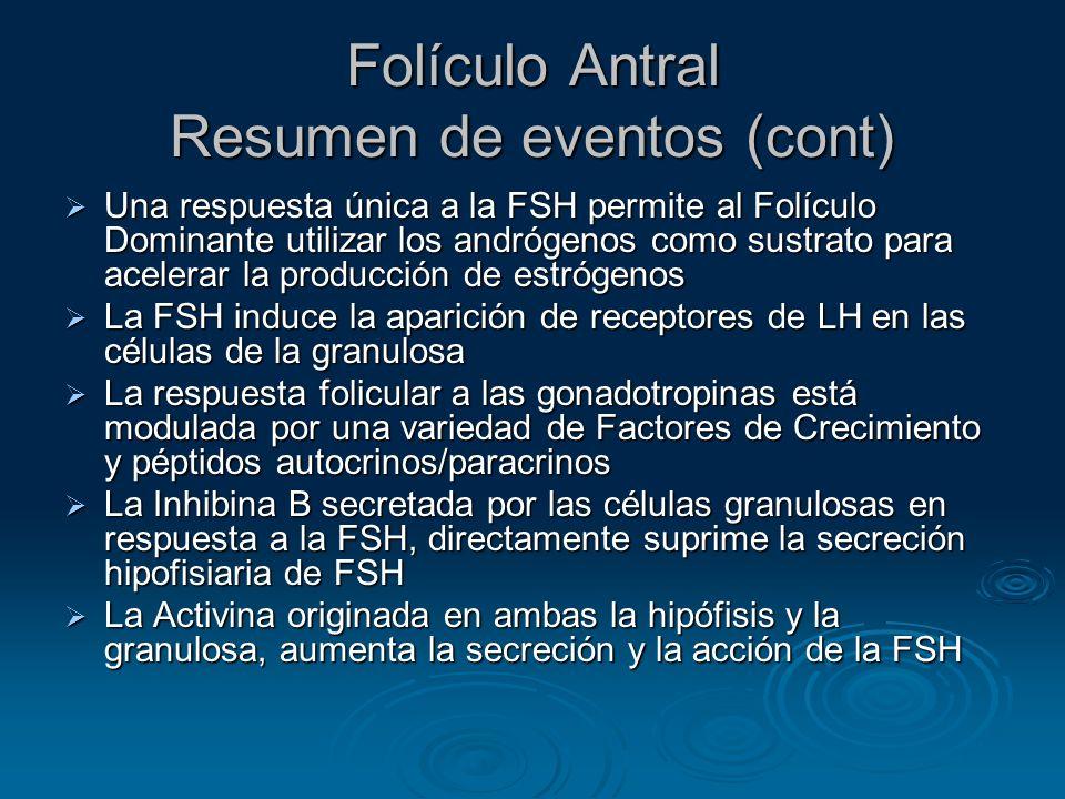 Folículo Antral Resumen de eventos (cont)
