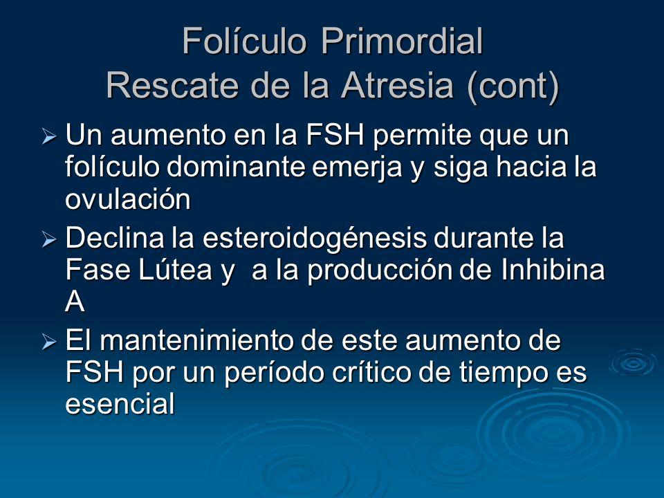 Folículo Primordial Rescate de la Atresia (cont)