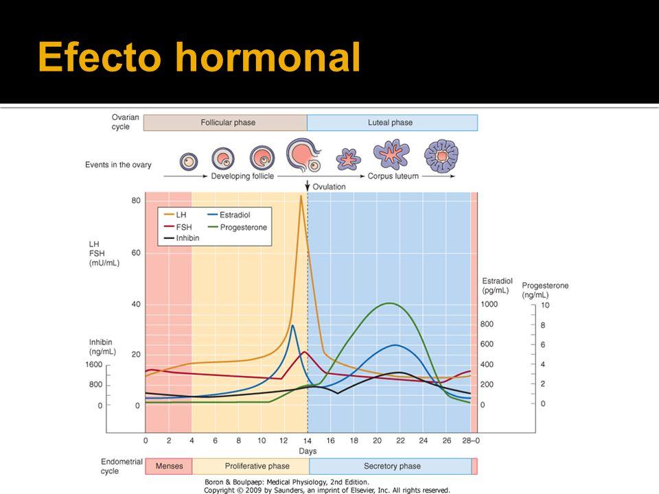 Efecto hormonal