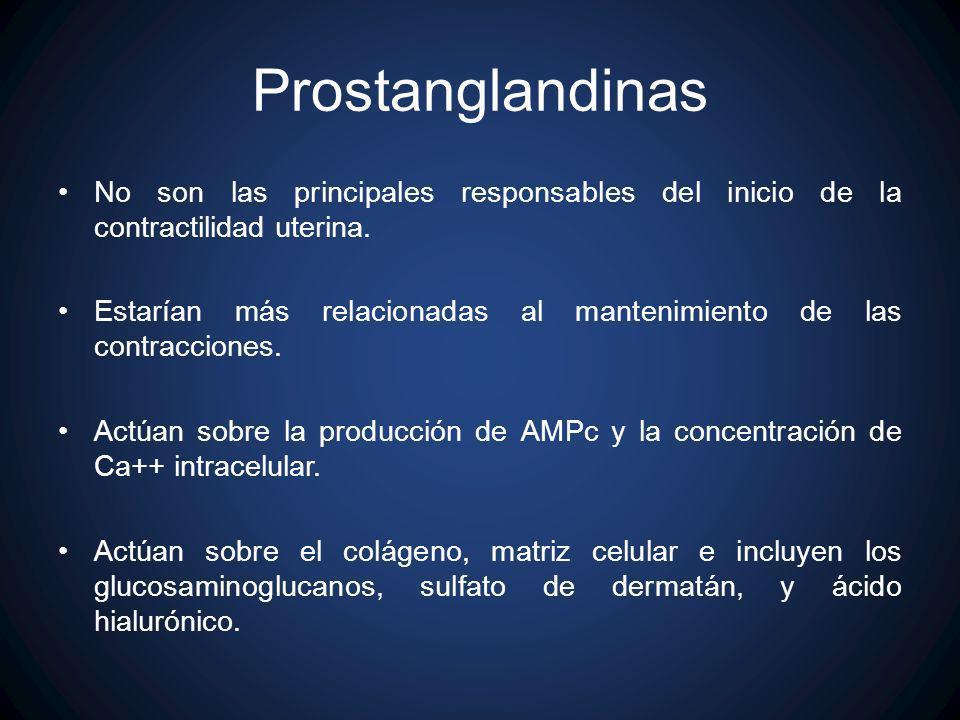 ProstanglandinasNo son las principales responsables del inicio de la contractilidad uterina.