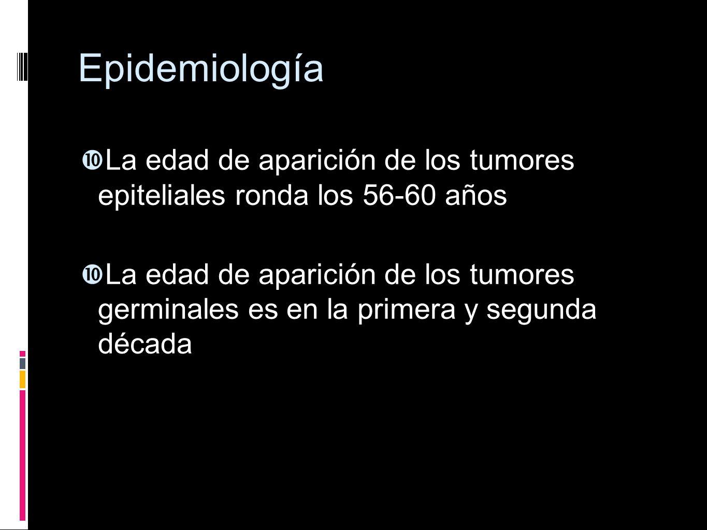 Epidemiología La edad de aparición de los tumores epiteliales ronda los 56-60 años.