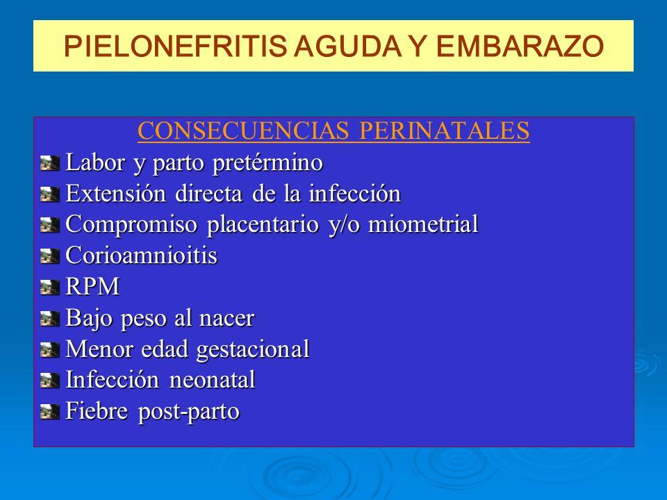 PIELONEFRITIS AGUDA Y EMBARAZO
