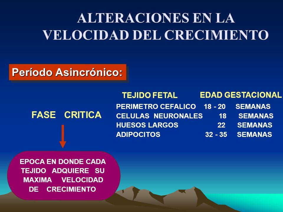 ALTERACIONES EN LA VELOCIDAD DEL CRECIMIENTO
