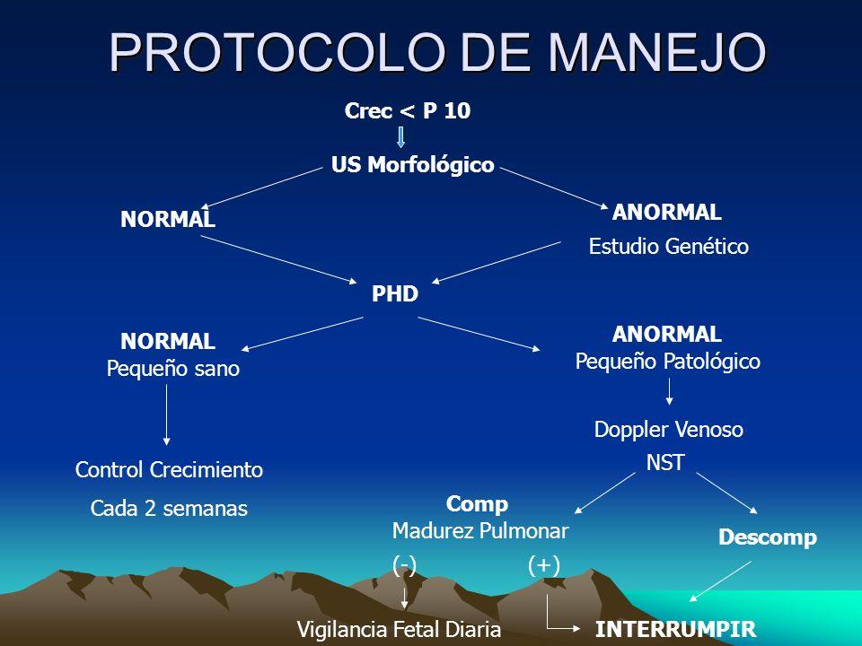 PROTOCOLO DE MANEJO Crec < P 10 US Morfológico ANORMAL NORMAL