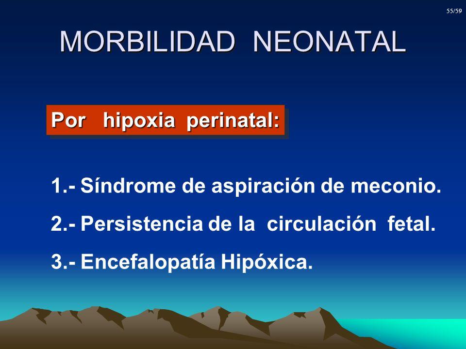 MORBILIDAD NEONATAL Por hipoxia perinatal: