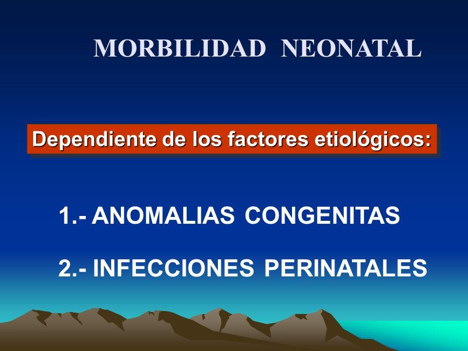 MORBILIDAD NEONATAL 1.- ANOMALIAS CONGENITAS
