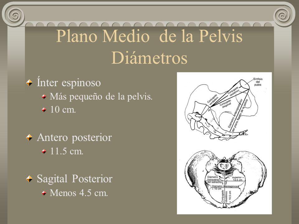 Plano Medio de la Pelvis Diámetros