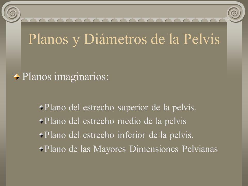 Planos y Diámetros de la Pelvis