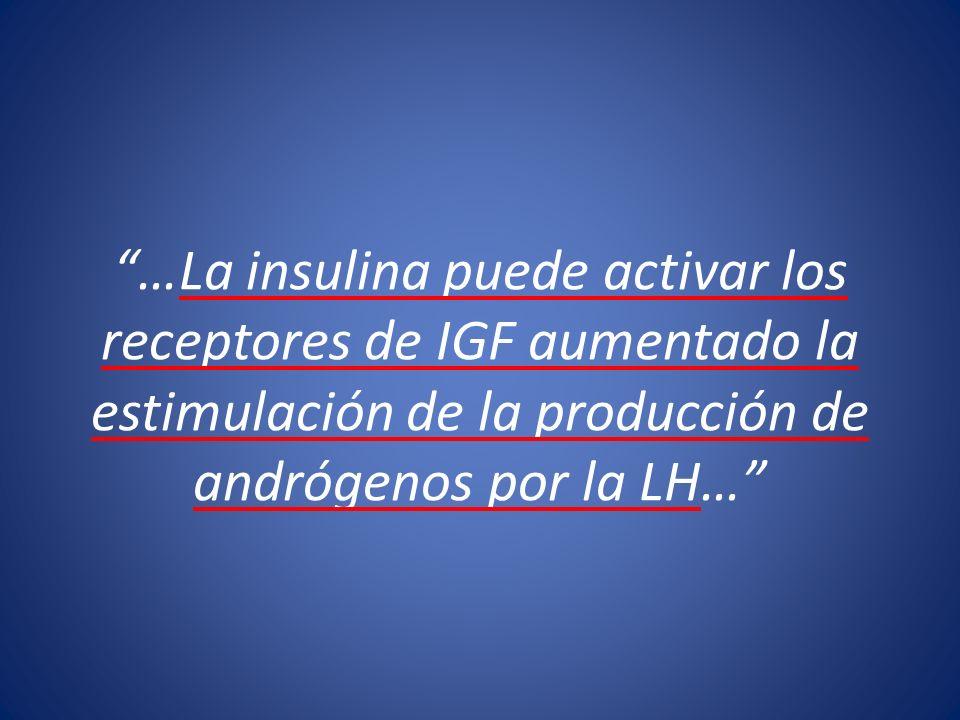 …La insulina puede activar los receptores de IGF aumentado la estimulación de la producción de andrógenos por la LH…