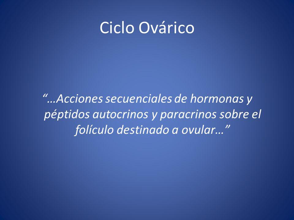 Ciclo Ovárico …Acciones secuenciales de hormonas y péptidos autocrinos y paracrinos sobre el folículo destinado a ovular…