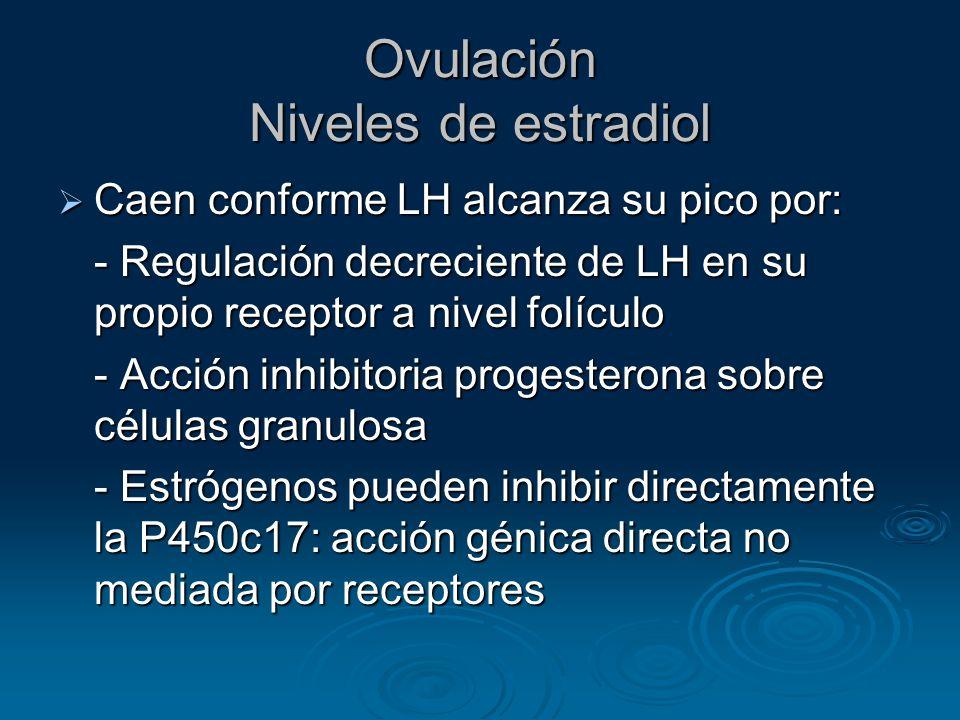 Ovulación Niveles de estradiol
