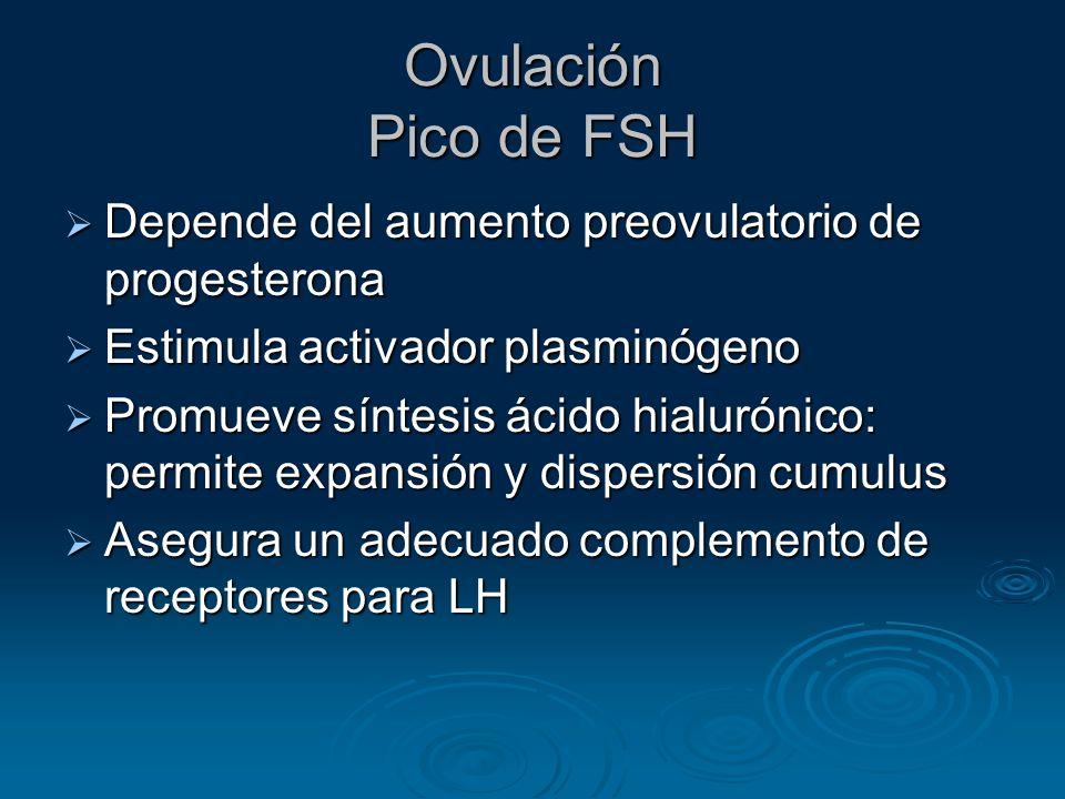 Ovulación Pico de FSH Depende del aumento preovulatorio de progesterona. Estimula activador plasminógeno.