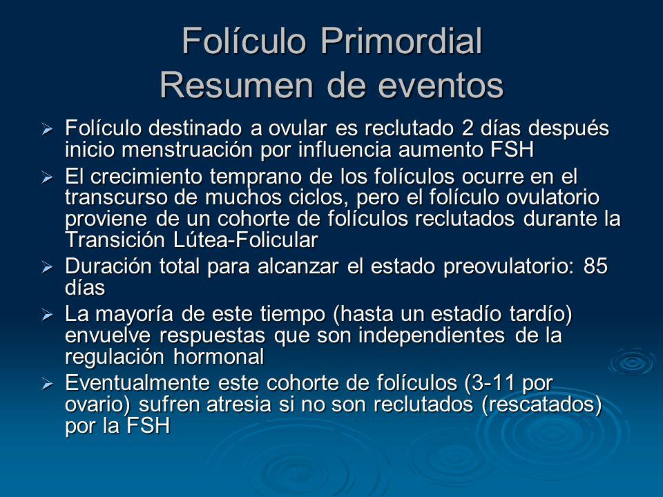 Folículo Primordial Resumen de eventos
