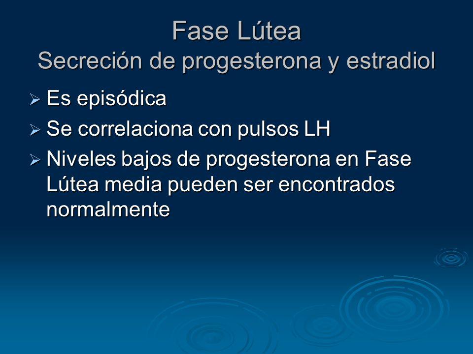 Fase Lútea Secreción de progesterona y estradiol