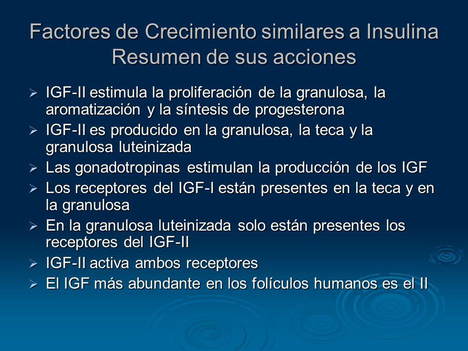 Factores de Crecimiento similares a Insulina Resumen de sus acciones