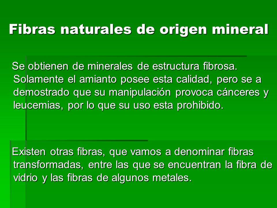 Fibras naturales de origen mineral