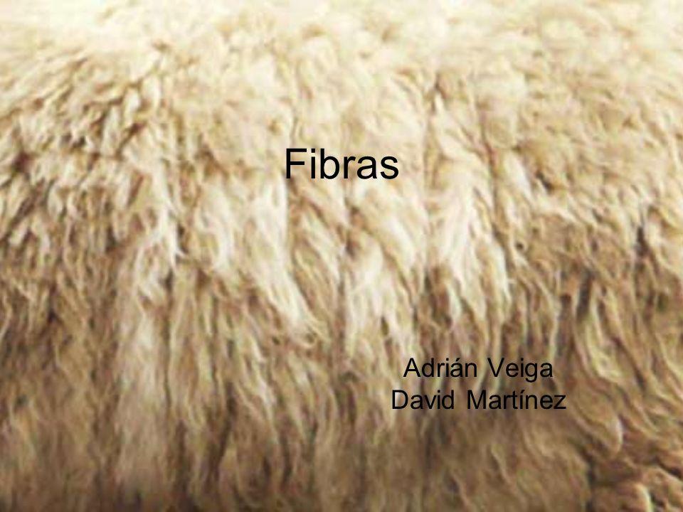Adrián Veiga David Martínez