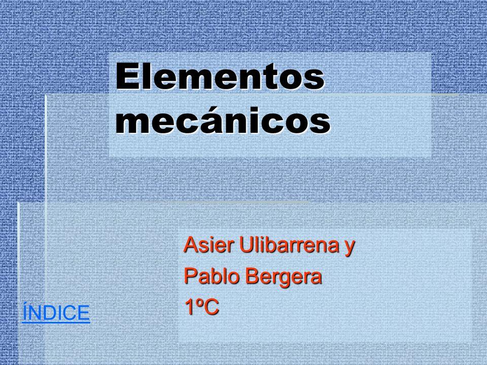 Asier Ulibarrena y Pablo Bergera 1ºC