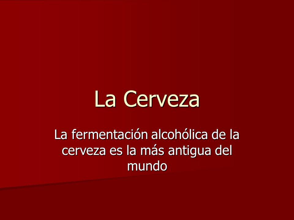 La fermentación alcohólica de la cerveza es la más antigua del mundo