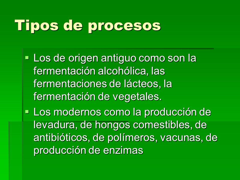 Tipos de procesos Los de origen antiguo como son la fermentación alcohólica, las fermentaciones de lácteos, la fermentación de vegetales.