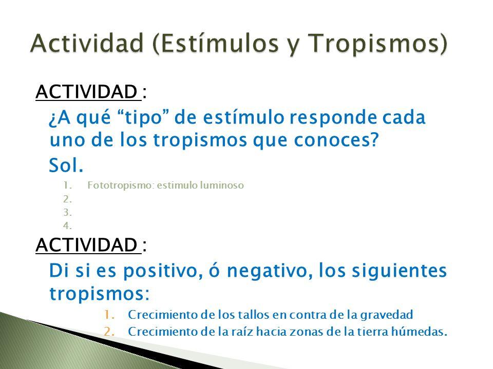 Actividad (Estímulos y Tropismos)