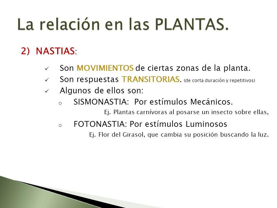 La relación en las PLANTAS.