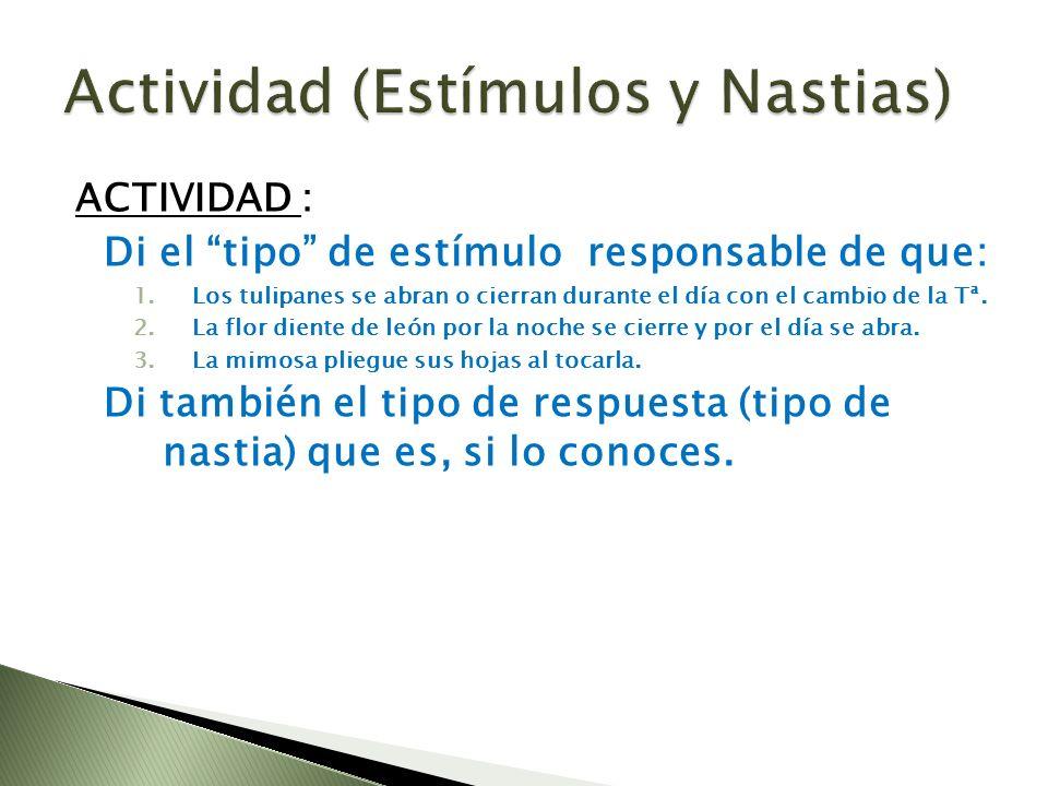 Actividad (Estímulos y Nastias)
