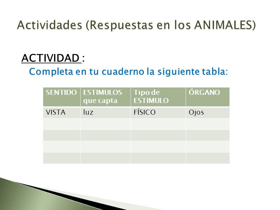 Actividades (Respuestas en los ANIMALES)