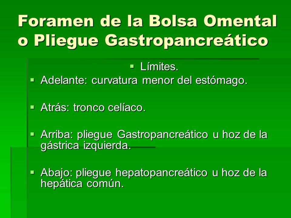 Foramen de la Bolsa Omental o Pliegue Gastropancreático