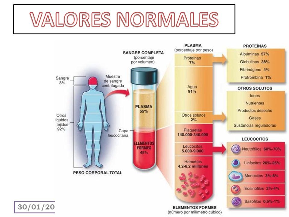 VALORES NORMALES 24/03/2017