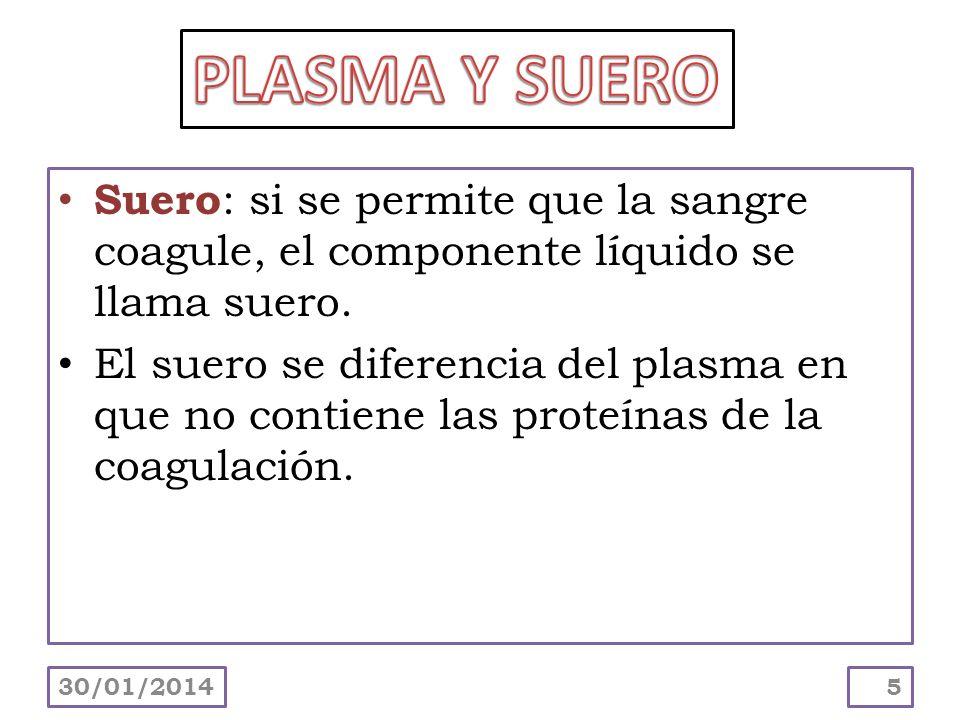 PLASMA Y SUERO Suero: si se permite que la sangre coagule, el componente líquido se llama suero.