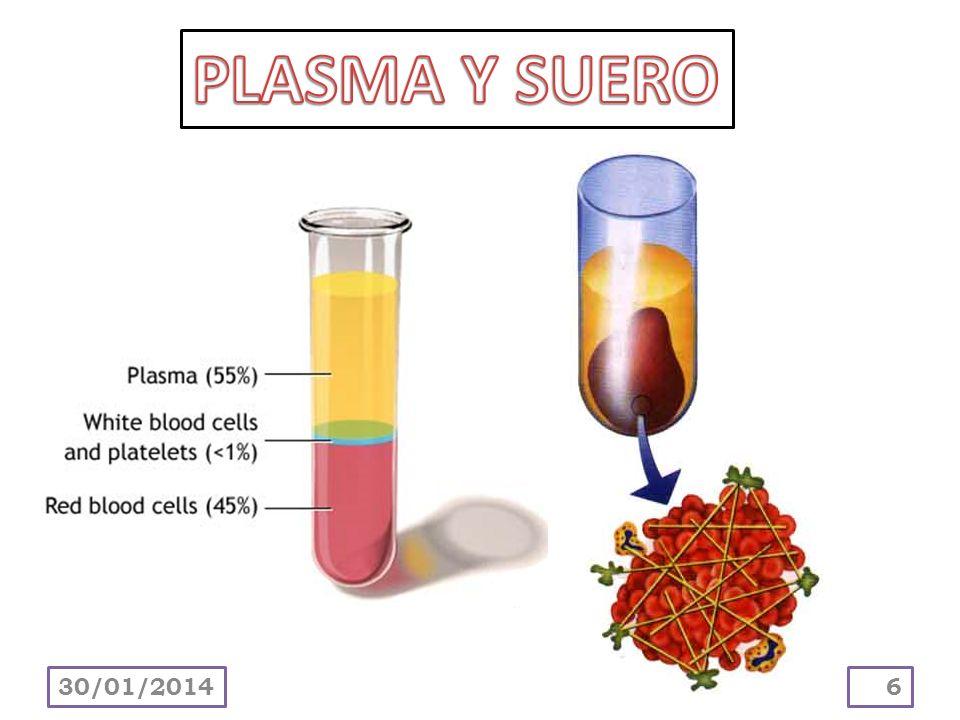 PLASMA Y SUERO 24/03/2017