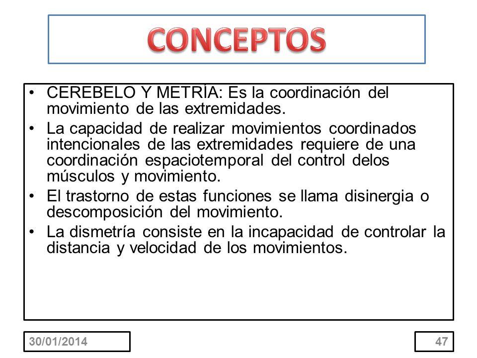 CONCEPTOS CEREBELO Y METRÍA: Es la coordinación del movimiento de las extremidades.