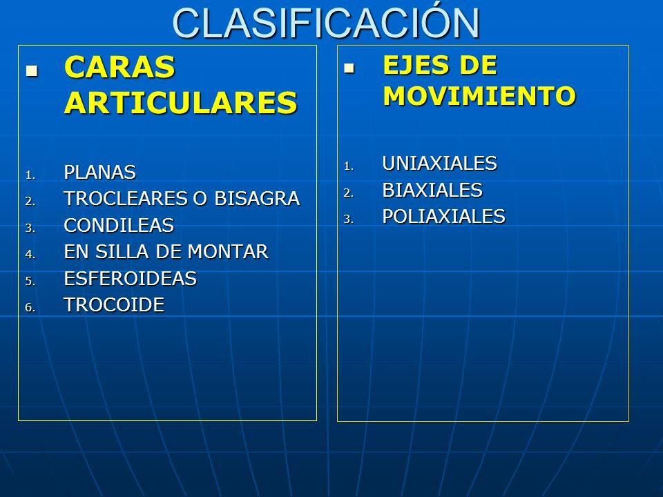 CLASIFICACIÓN CARAS ARTICULARES EJES DE MOVIMIENTO UNIAXIALES PLANAS