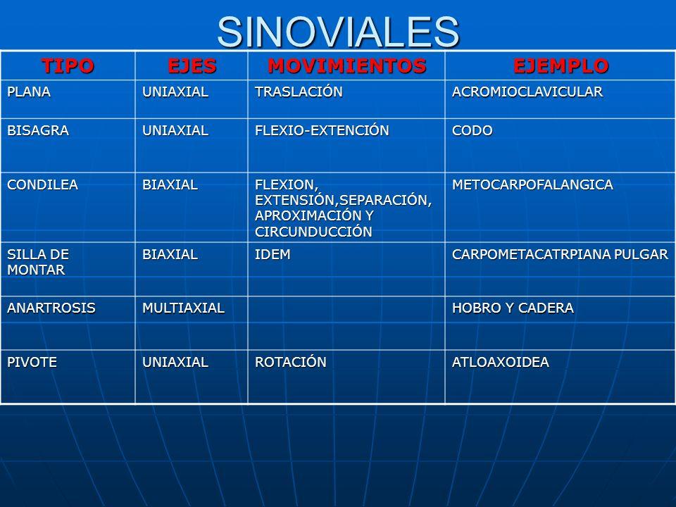 SINOVIALES TIPO EJES MOVIMIENTOS EJEMPLO PLANA UNIAXIAL TRASLACIÓN