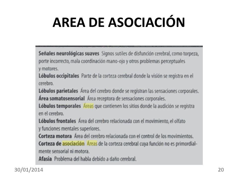 AREA DE ASOCIACIÓN 24/03/2017