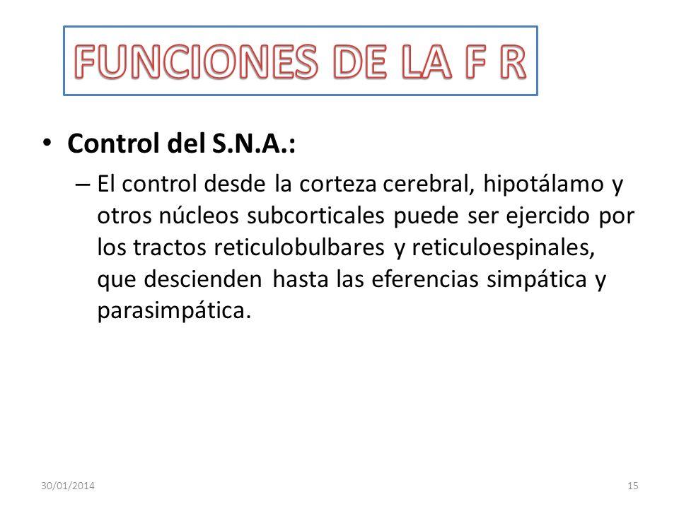 FUNCIONES DE LA F R Control del S.N.A.: