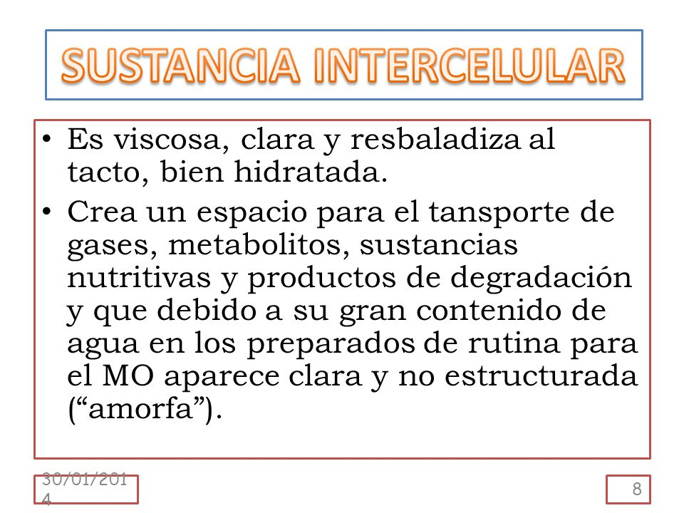 SUSTANCIA INTERCELULAR