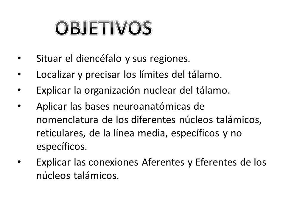 OBJETIVOS Situar el diencéfalo y sus regiones.
