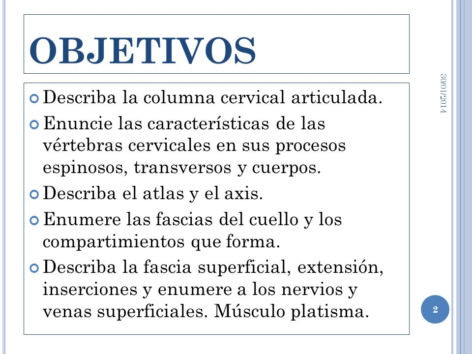 OBJETIVOS Describa la columna cervical articulada.