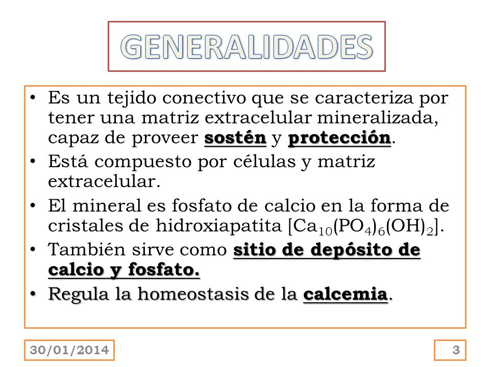GENERALIDADES Es un tejido conectivo que se caracteriza por tener una matriz extracelular mineralizada, capaz de proveer sostén y protección.