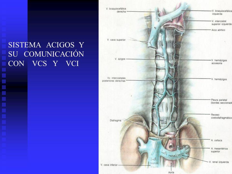 SISTEMA ACIGOS Y SU COMUNICACIÓN CON VCS Y VCI