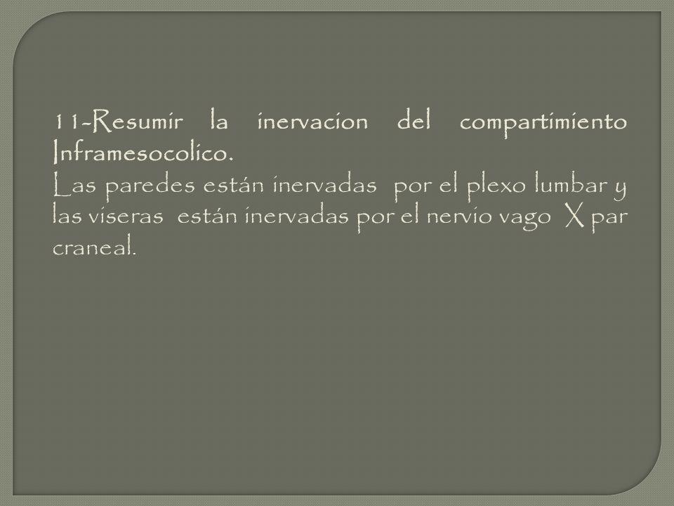 11-Resumir la inervacion del compartimiento Inframesocolico.