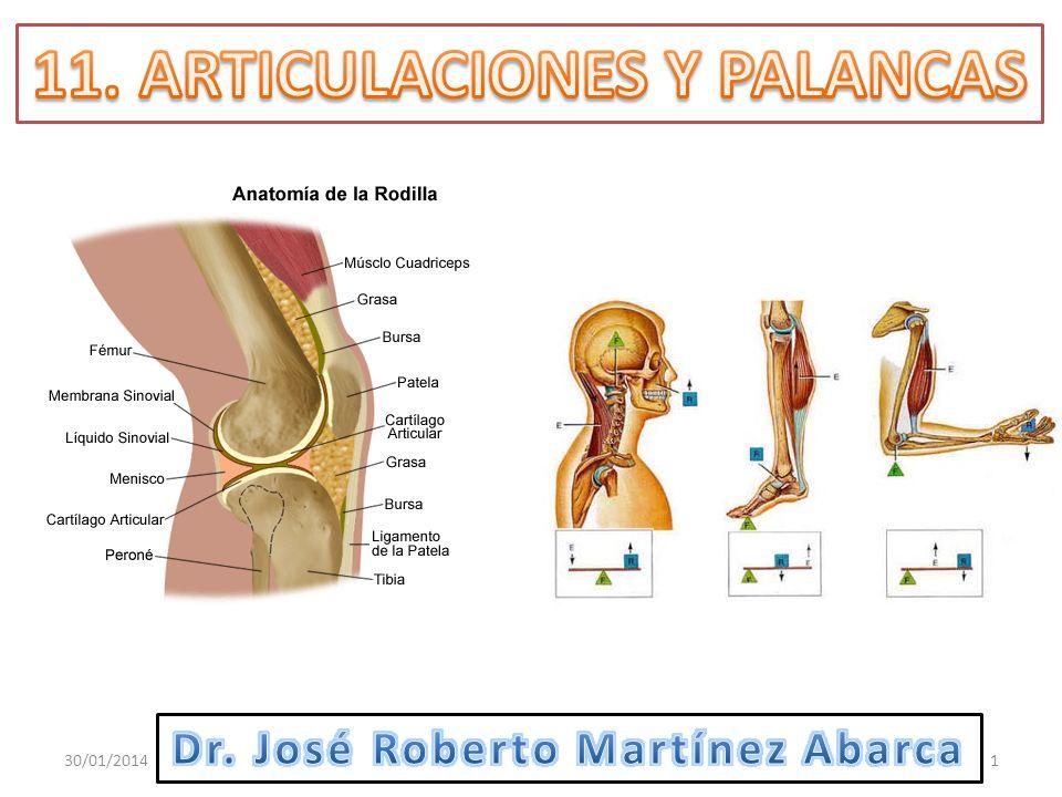 11. ARTICULACIONES Y PALANCAS Dr. José Roberto Martínez Abarca