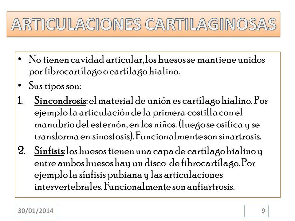 ARTICULACIONES CARTILAGINOSAS